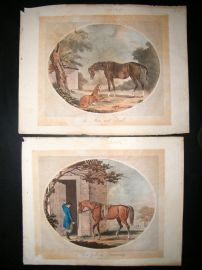 Francis Jukes after Ansell C1817 Life and Death of a Racehorse. Set of 6